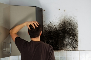 Call a mold removal professional if the mold damage is extensive.