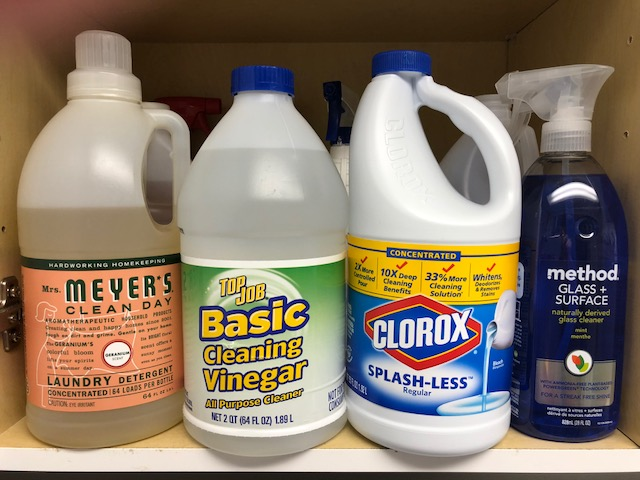 Mold vs bleach. Does it work?